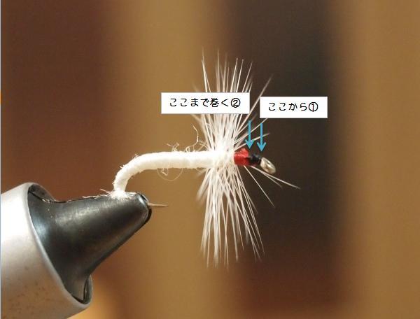 PB240036