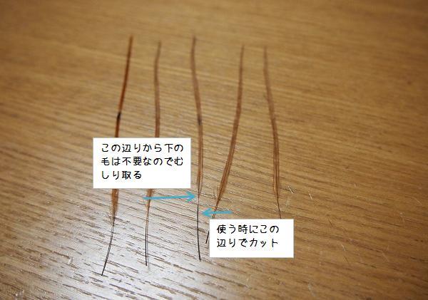 不要な部分の毛を取り除く